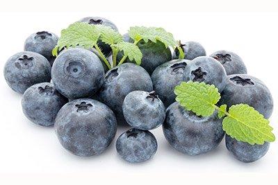 Bilberry (Berry)