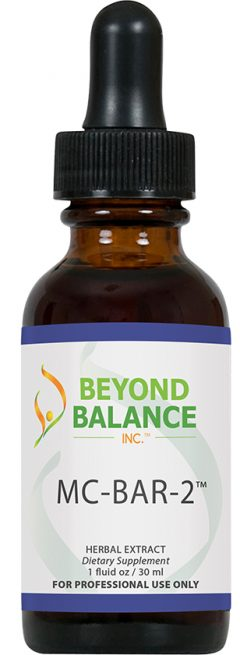 MC-BFM-1 – Beyond Balance