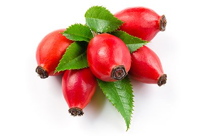 Rosehips (Hip)