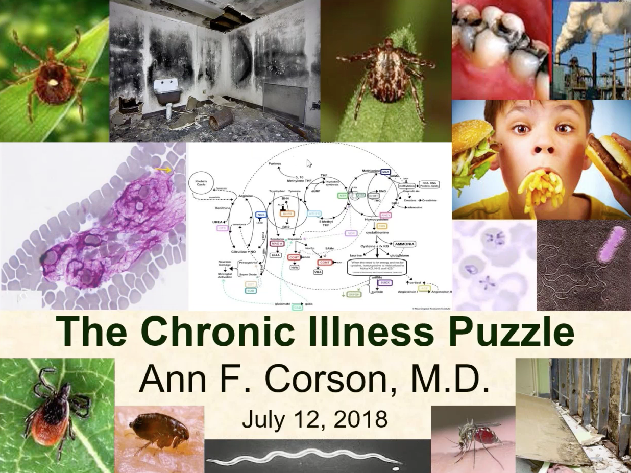 The Chronic Illness Puzzle with Dr. Ann Corson